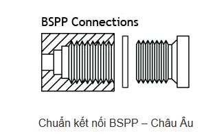 Bảng tra kích thước ren hệ BSP