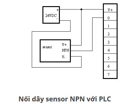 Nên dùng cảm biến loại NPN hay PNP khi đấu vào PLC
