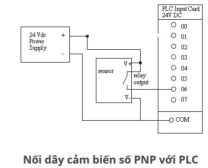 Nên dùng cảm biến loại NPN hay PNP đấu vào PLC