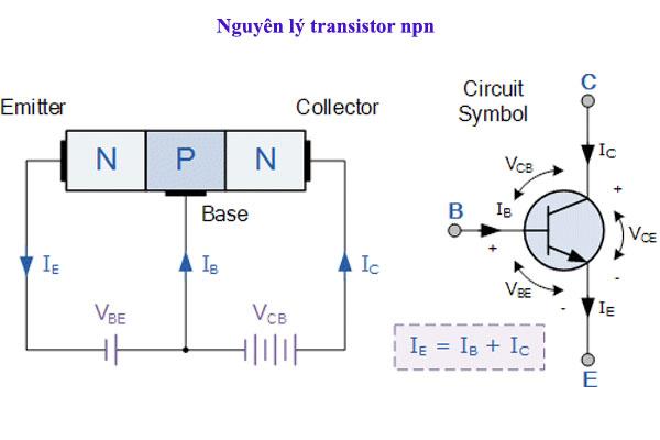 nguyên lý làm việc của diode