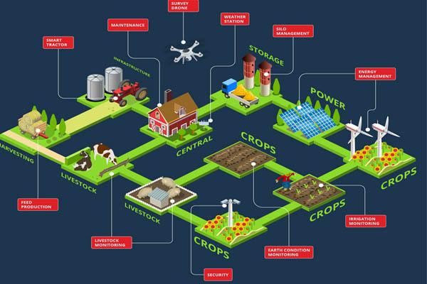 ứng dụng của iot trong nông nghiệp